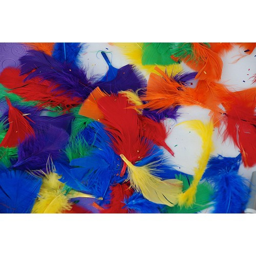 Feathers Solid Color Packs