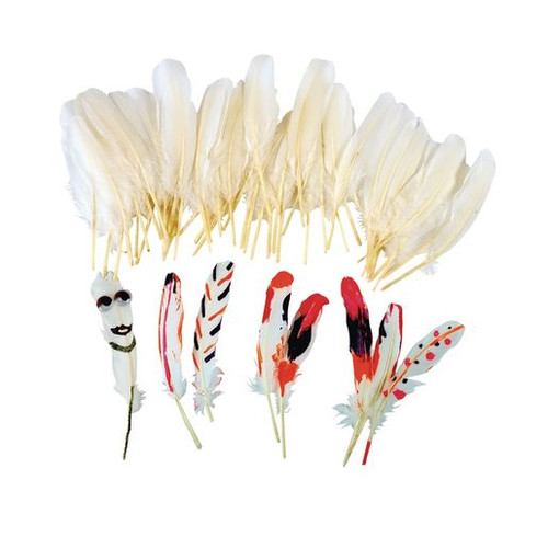 White Feathers Set of 48
