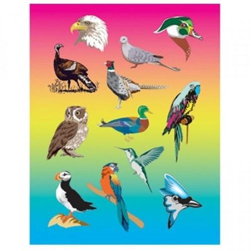 Bird Stickers Classpack
