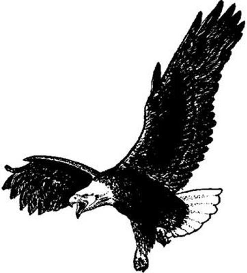 Emerald Creek Bald Eagle - Cling Mount