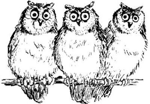 Emerald Creek Owls - Cling Mount