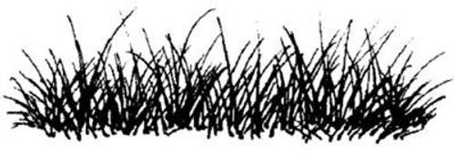 Emerald Creek Grass - Cling Mount