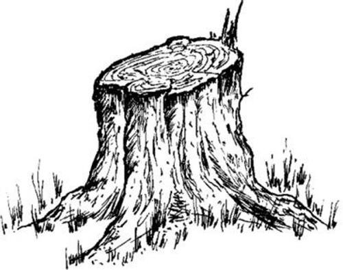 Stumpy - Cling Mount