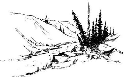 Exstream - Cling Mount