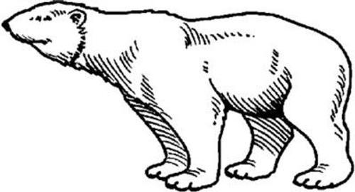 Emerald Creek Polar Bear - Cling Mount