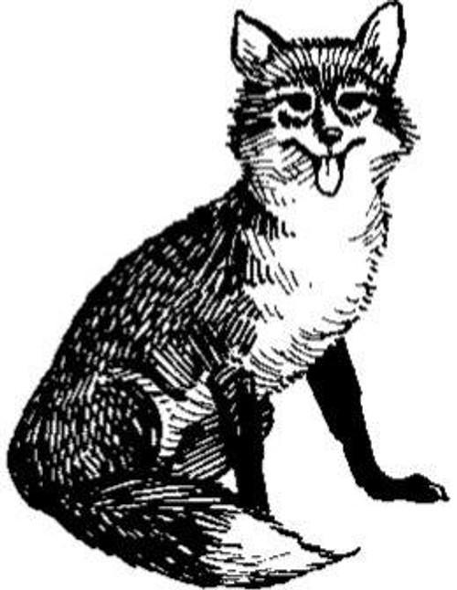 Emerald Creek Fox