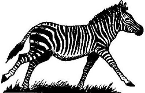 Emerald Creek Zebra