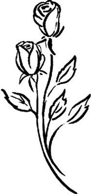 Emerald Creek Roses