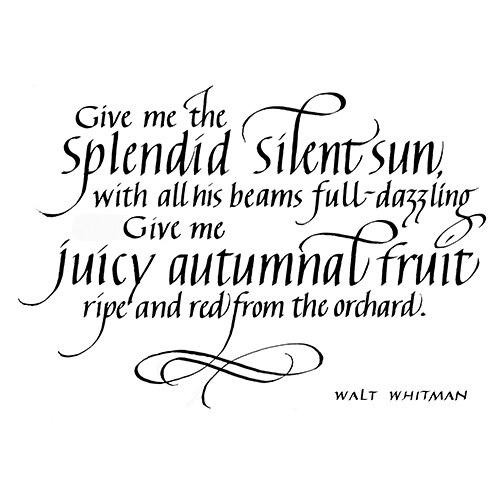 Quietfire Give Me the Splendid Silent Sun