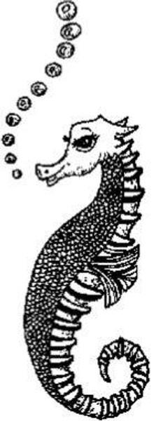 Emerald Creek Seahorse - Cling Mount