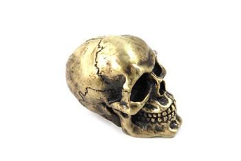 Skull Shifter Knob w/ Brass Finish