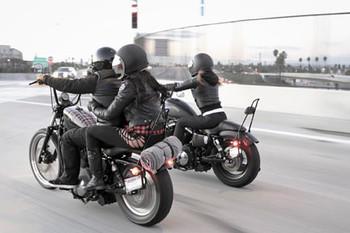 Burly Brand - Short Black Sissy Bar fits '04-'18 Harley XL Sportster