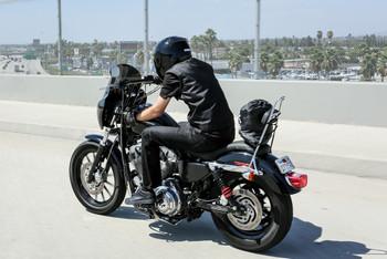Burly Brand - Long Chrome Sissy Bar fits '04-'17 Harley XL Sportster