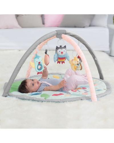 Skip Hop Treetop Friends Baby Activity Gym - Grey/Pastel