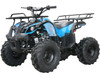 Coolster ATV-3125XR8-S Kodiak-Hd125 Semi-Auto Mid Size, 124CC Air Cooled, Single Cylinder, 4-Stroke ATV - Fully Assembled and Tested