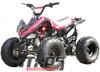 "ICE BEAR 125cc ""Big Cat"" ATV Automatic with Reverse, Remote Kill, 19"" Big Tires (PAH125-12)"
