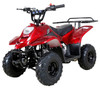 Taotao Boulder B1 110CC Small Kids ATV - Air Cooled, 4-Stroke, 1-Cylinder, Automatic - Fully Assembled and Tested