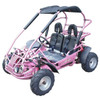 Carb Approved TrailMaster Mid XRX/R GoKart