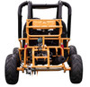 Vitacci Sprint 125cc Gokart, Independent Dual A-Arm, Auto With Reverse