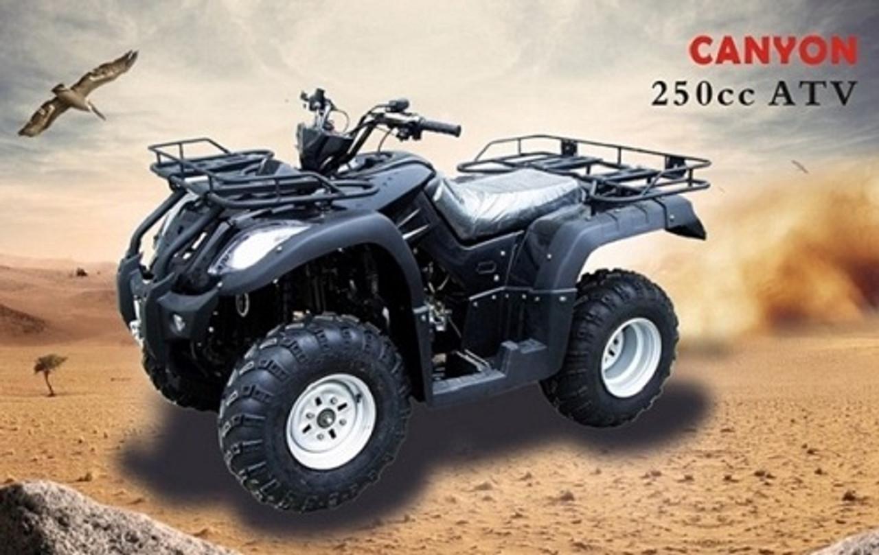 new atv 250 cc canyon auto with reverse