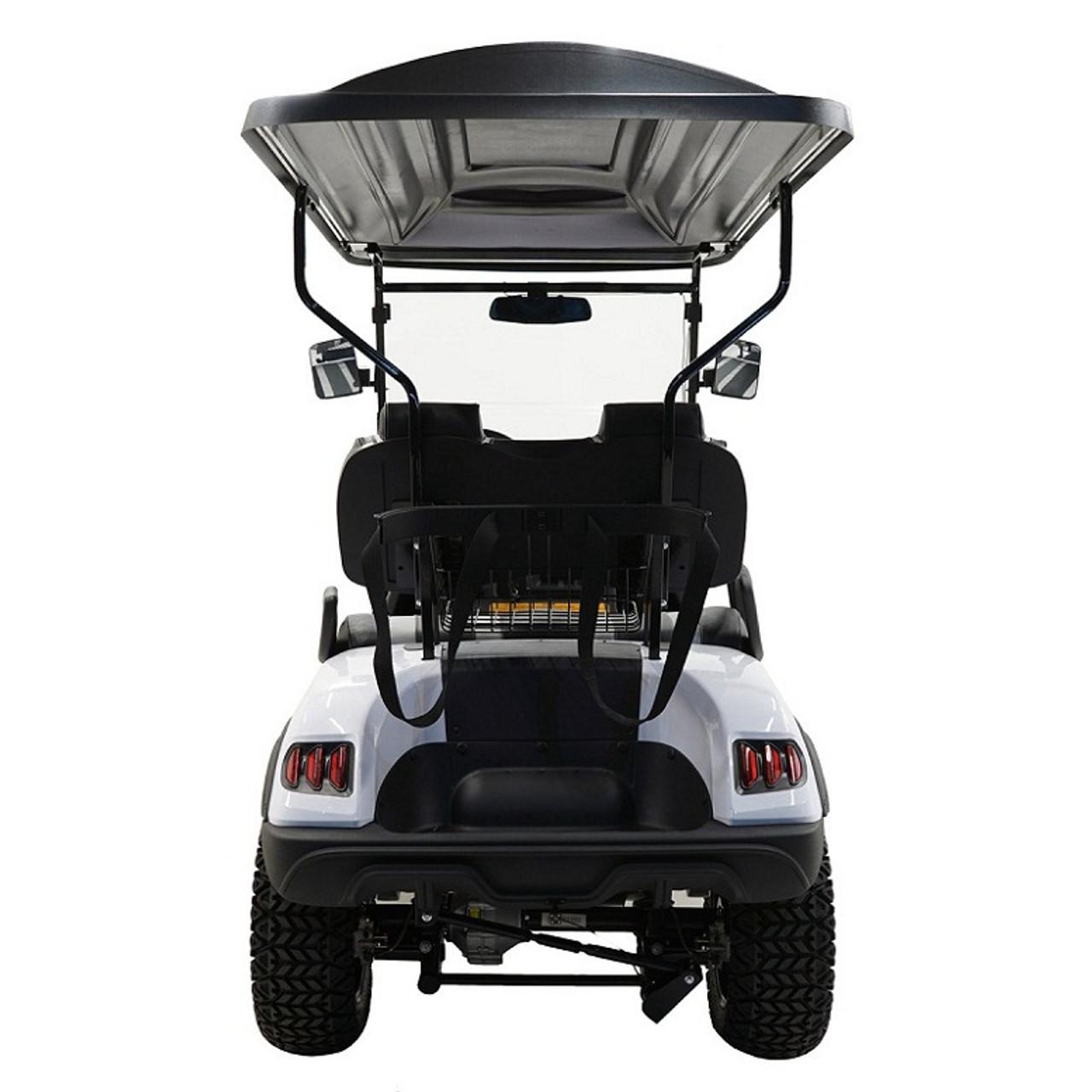 MASSIMO MGC2 48V GOLF CART UTV, 48V AC MOTOR
