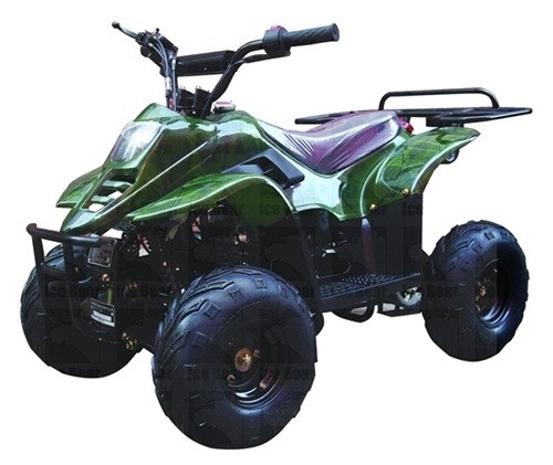 "CARB APPROVED ICE BEAR 110cc Youth ATV Fully Automatic w/ Remote Control, 6"" Tires (PAH110-2)"