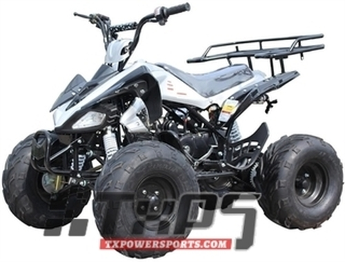 "ICE BEAR 125cc ""Big Cat"" ATV Automatic with Reverse, Remote Kill, 19"" Big Tires (PAH125-12)"