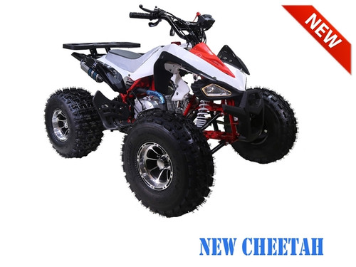 atv 125cc ata-125 NEW CHEETAH ASSEMBLED