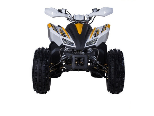 TAOTAO REX 120CC Electric Start ATV, Air Cooled, 4-Stroke, 1-Cylinder, Automatic With Reverse, Fully Assembled and Tested