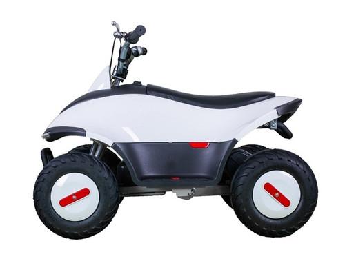 TaoTao ROVER350 350 Watt ATV, Brush Electric Motor