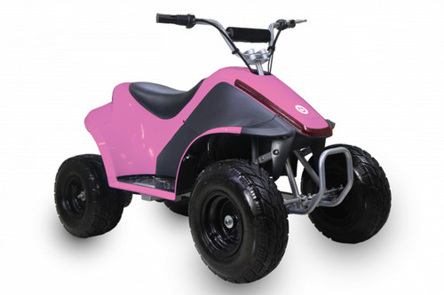 TaoTao ROVER500 500 Watt ATV, Brush Electric Motor