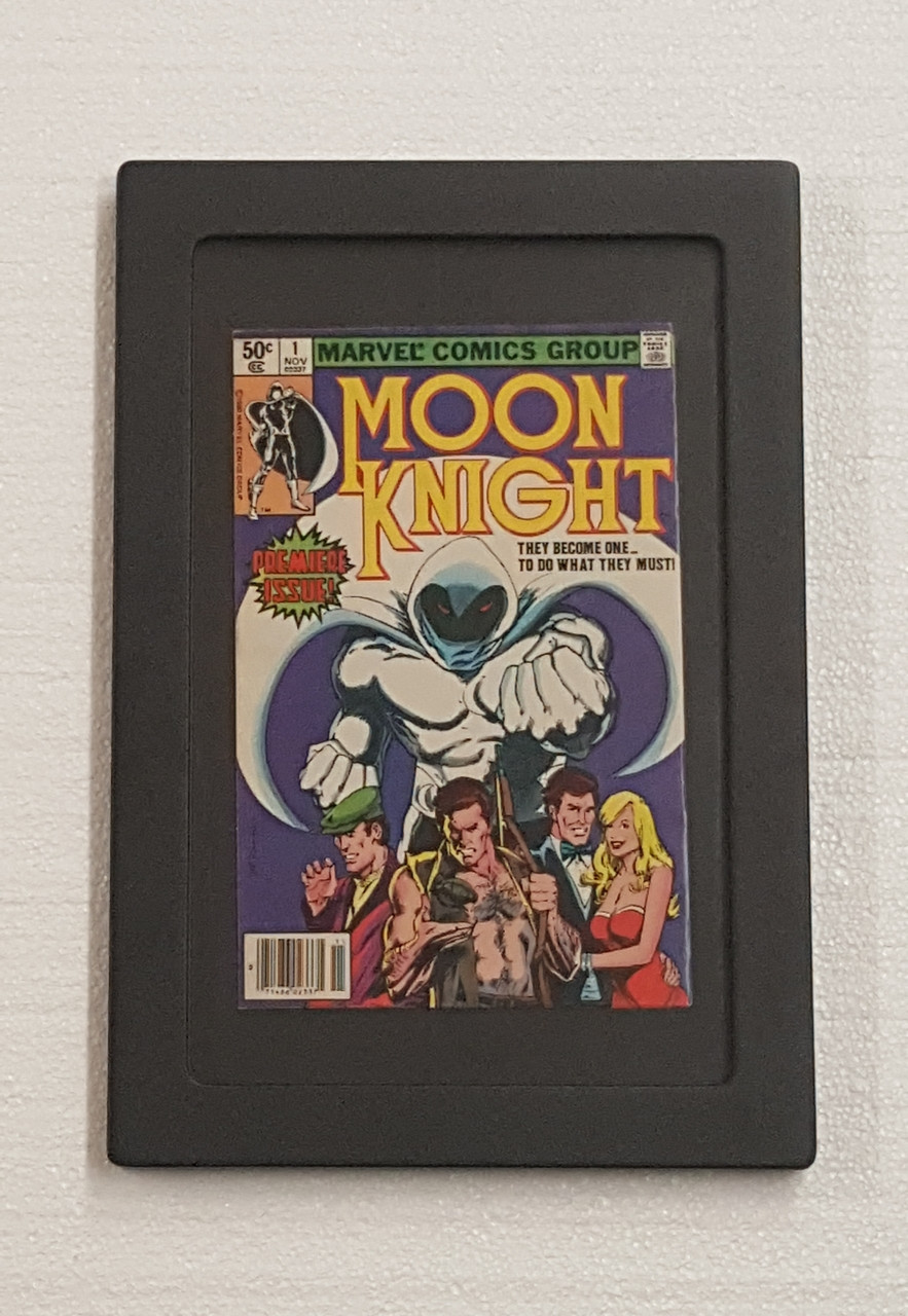 This is an example of how a comic book will look using a Loose Book Insert set in a Graded Comic Book POD