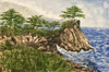 Cypress Tree Point oil painting by Michael Silbaugh. This scene is one of the most photograph places in the world along 17 mile drive in Pebble Beach, California.