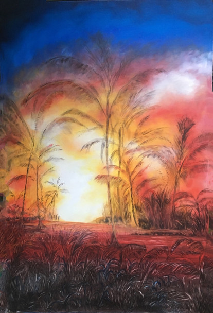 """""""Aina(land)of Leilani"""" Kilauea eruption hanged life for those impacted by this unprecedented eruption, and explore the challenges and changes ahead as the island faces an uncertain future."""