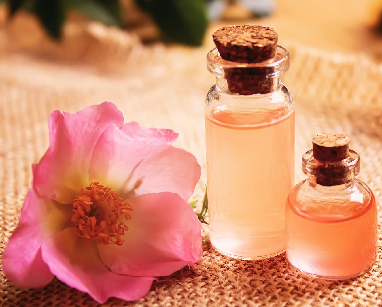 body-nectar-rose-cropped.jpg