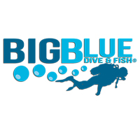 Big Blue Dive & Fish
