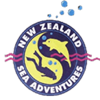 NZ Sea Adventures