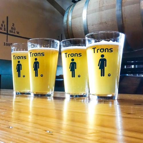 Trans Pint Glass Set