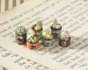 Quarter scale (1:48) succulents/hens and chicks in rusty cans.
