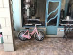 The bicycle is shown in front of Joie de Vivre Bookshop.
