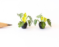 1:48 quarter scale flowerpots shown with the monstera kit