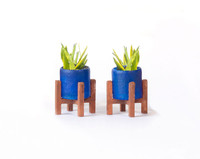 1:48 quarter scale snake plants kit