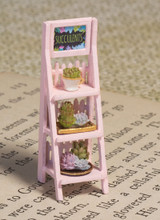 Succulents Market  Shelf Kit