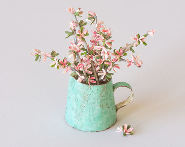 Dogwood Flowers in a Pitcher