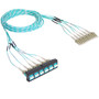 Preterminated Cassette Fiber Optic LC Patch Panel with Cable Assembly 12 Fibers Bezel to Patch Cords