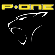 P-ONE
