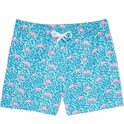 "Men's Chubbies Domingos Are For Flamingos 5.5"" Swim Trunks Bright Blue Front"