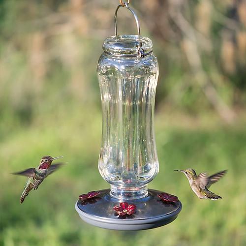 Perky-Pet Vintage Hummingbird Feeder, Starglow (8132-2)