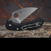 Spyderco Dragonfly 2 Wharncliffe
