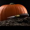 Warren Cutlery Pumpkin Carving Tool Set
